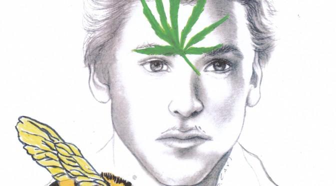 Stop Living in Denial of the Marijuana – Mental Health Crisis