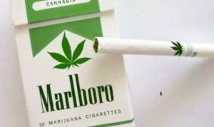 marijuana-cigarettes
