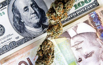 The Tide is Changing — Marijuana Industry Exposed
